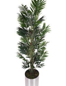 Yapay Areka ağaç