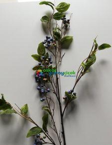 yapay-Blueberry-Northsky