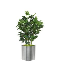 Yapay  Philodendron Tree