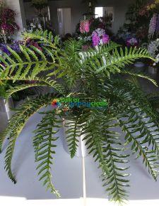 Yapay Fujer bitkisi- Yapay aşk merdiveni