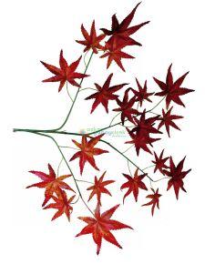Yapay hazan ağacı yaprağı