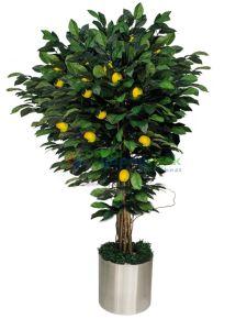 Yapay limon ağacı minyatür