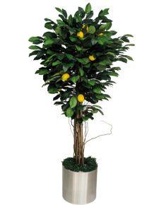 Yapay limon ağacı