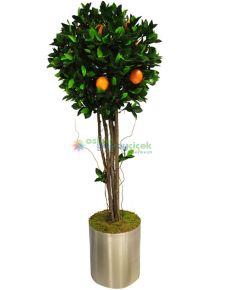 Yapay Portakal Ağacı