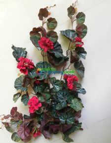 Yapay kırmızı çiçekli sakız sardunya