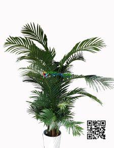 Yapay Star Jumbu Areka ağaç