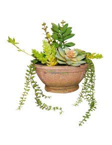 Yapay sukulent bitkilerden terrerium
