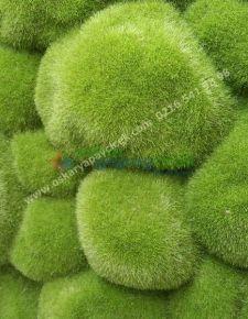 Yapay Taş yosun