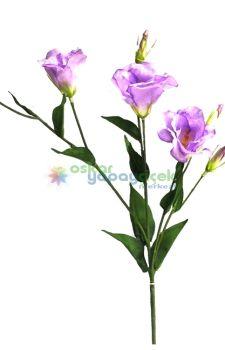 Lila lisiyantüs çiçek üç çiçekli