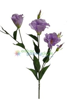 Mor lisiyantüs çiçek