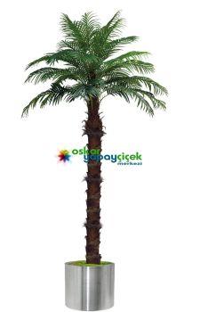 Tekli Yapay Palmiye ağacı