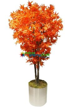 Yapay Kızıl Hazan Ağacı