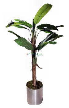 Yapay Muz Ağacı