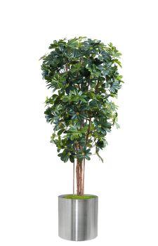 Yapay sheflore ağaç 180 cm